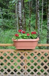 Holzzäune aus Polen im Garten